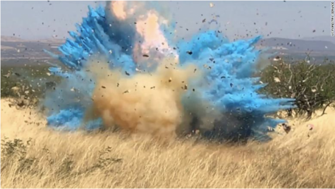 The US Forestry Service released the video of the gender reveal gone horribly wrong.