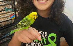 Freshman Friday: Vivianne (Everett) Alquicira