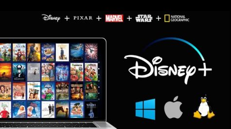 A photo of Disney+ (not including Star)