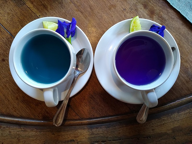 Did you like Butterfly Pea tea? Here are some other teas you might like!